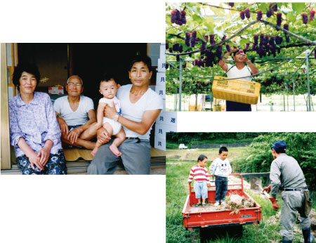 雲南市加茂町なぶどう農園「ギアファーム」